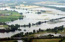 Peste 7.000 de hectare de terenuri agricole, 3.000 de hectare de pasuni si 1.000 de hectare de paduri au fost afectate de inundatii