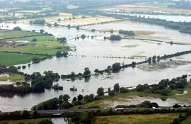 Cauza care a dus la inundarea Parcului Lunca Argesului poate duce la un dezastru ecologic!
