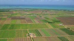 Bicaz Chei: Record de fonduri europene pentru dezvoltare rurala!