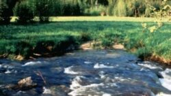 Comisia Europeana prezintă un plan de acțiune pentru protejarea resurselor de apă ale Europei