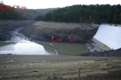 Dezastru ecologic pe Bârzava, mii de peşti morţi