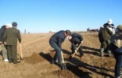 Olt: Impaduriri integrale pe o suprafata de peste 160 de hectare