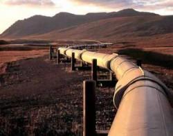 """OPEC se asteapta la o scadere a veniturilor din cauza """"revolutiei gazelor de sist"""""""
