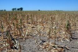 Scoarta planetei se ridica din cauza secetei