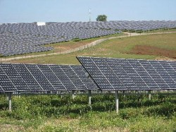 Parc solar de 50 de milioane de euro in Mandra
