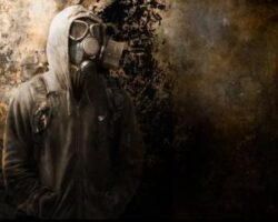 Animalele, singurele supravietuitoare ale catastrofei nucleare de la Cernobil