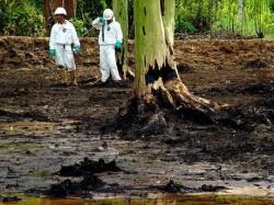 "Presedintele ecuadorian lanseaza campania ""Mana murdara a Chevron"""