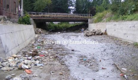 Pârâul Maleia – raiul gunoiului din Centrul Civic