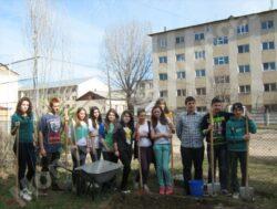 """""""Ora de ecologie"""" la Ateneul Popular"""