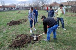Copiii de la centru de plasament din Gavojdia au participat la o actiune ecologica de plantare a pomilor