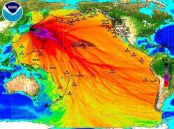 Accidentul nuclear de la Fukushima a crescut riscul aparitiei cancerului