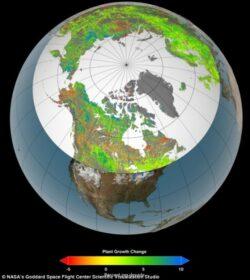 Zonele polare devin mai verzi: Cum se schimba anotimpurile din cauza incalzirii globale