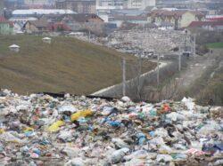 Prinsi de politisti in timp ce transportau deseuri reciclabile industriale