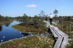 """Seful Centrului pentru Arii Protejate si Dezvoltare Durabila, Paul Iacobas: """"Turistii trebuie sa lase natura asa cum este"""""""