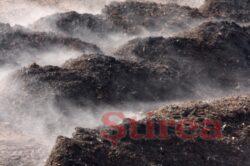 Poluanta agricultura, si neimpozitata si netaxata