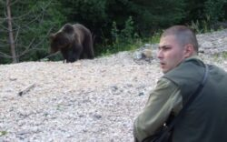 Ursii din Sinaia au iesit la plimbare in zona Castelului Peles