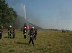 Protejarea padurilor, o preocupare permanenta pentru pompierii bihoreni