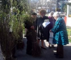 "Actiunea ""Flori de Mai"" continua: gard viu si gazon pentru Constanta verde"