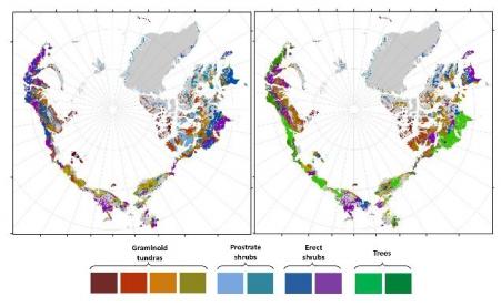 Schimbarea care va afecta întregul Glob. Zona arctic?