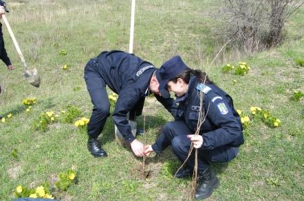 Jandarmii clujeni au iesit la plantat copaci
