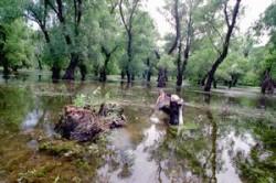 Galati: Amenajarea Luncii Dunarii, in dezbatere publica