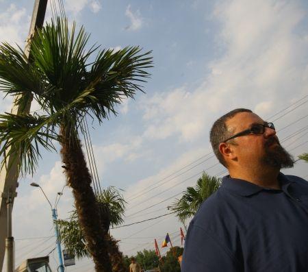 Palmierii din Sectorul 4, în cas? nou?, pe plaja ecologic? din Or??elul Copiilor