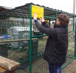 Primaria Turda: Vor fi amenajate mai multe puncte de colectarea gunoiului, pe strada Constructorilor
