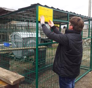 Prim?ria Turda: Vor fi amenajate mai multe puncte de colectarea gunoiului, pe strada Constructorilor