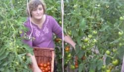 Hrana ecologica, noul trend in agricultura