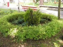 Verde de Beclean