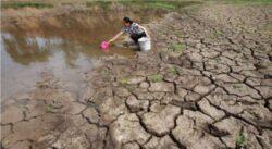 Dezbatere despre schimbarile climatice si efectul acestora asupra agriculturii