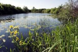 "Biodiversitatea Ariilor Protejate ""Raul Tur"" - o comoara comuna"