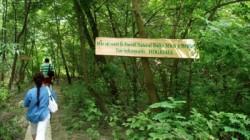 Excursii in Muntii Macin si Balta Mica a Brailei, de Ziua Mediului