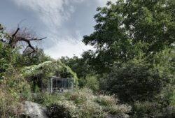 Inghitit de natura: Garajul din munti transformat in casa-gradina