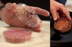 Primul burger creat in vitro, pornind de la celule susa de vaca, a fost gatit si degustat, luni, la Londra