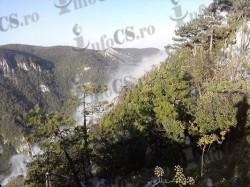 Incendiu devastator în Parcul Na?ional Domogled
