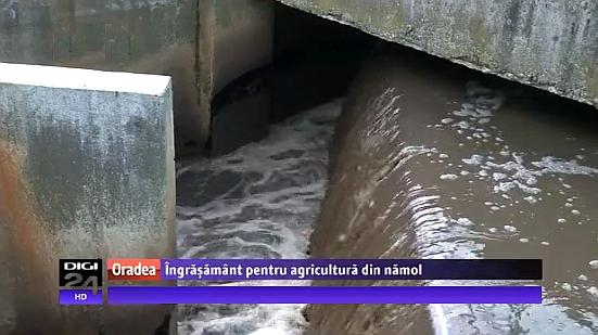 Îngr???mânt ecologic din reziduuri de pe conducte, cel mai nou plan al Companiei de Ap? Oradea