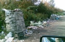 Munti de gunoaie au aparut pe un drum judetean din Arad, intre satul Rapsig si orasul Sebis