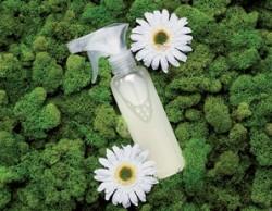 Insecticid-ecologic-din-ulei-si-detergent-de-vase