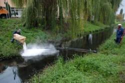 Poluare pe Peta - 3 km de panza petroliera