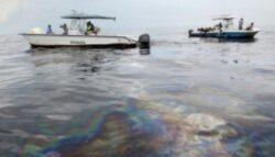 Pata de poluare de circa un kilometru si o latime de 600-700 de metri pe Dunare