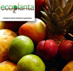 Proiectul ecoplanta