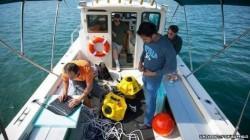 Cercetatorii au creat o retea wi-fi subacvatica, pentru a rezolva problemele de mediu ale oceanelor