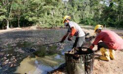 Ecuador: Amenda Chevron pentru poluare, redusa la jumatate - 9,5 miliarde dolari. Sentinta e definitiva