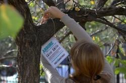 """Campania """"Pune pret pe natura!"""" arata care este valoarea ariilor protejate din Muntii Carpati"""