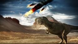 Fenomenele naturale si extinctia speciilor