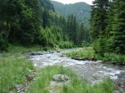 Unul dintre cele mai frumoase rauri din Romania risca sa devina un amestec de noroi si piatra din cauza unei microhidrocentrale
