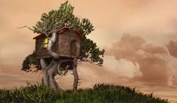 O familie din Bistrita este hotarata sa construiasca prima casuta ecologica intr-o mare de vile