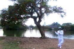"""Un ecologist din Peru s-a """"casatorit"""" cu un copac pentru a atrage atentia asupra problemelor de mediu"""