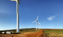"RWEA: ""Energia eoliana a coborat vertiginos pretul electricitatii pe bursa"""